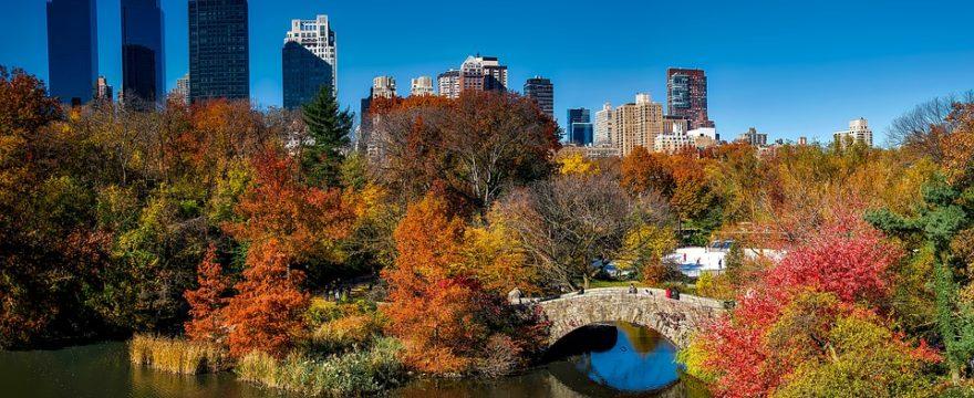 3 Volunteer Vacation Ideas In New York City