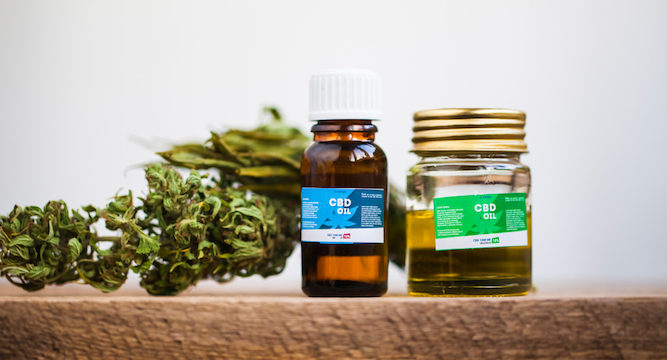 What Your Mom Never Told You About CBD Oil