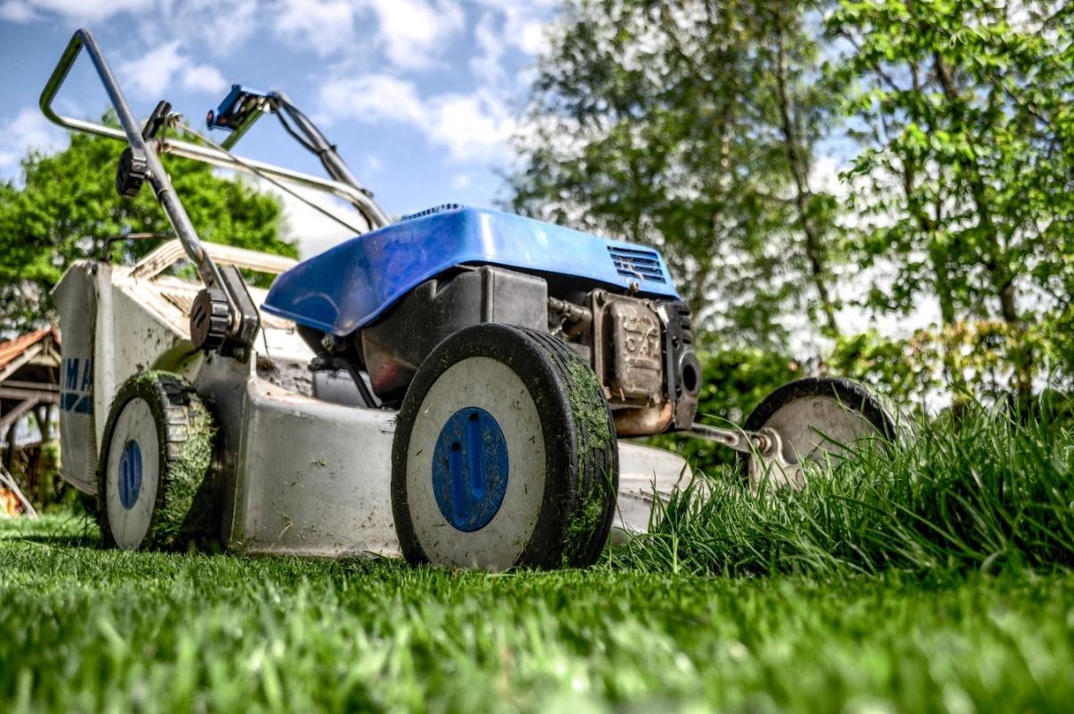 D:\Juan\Desktop\CRC\80249-0419RI - Lawn Mowers And Lawn Mower Lift Reviews\garden-grass-meadow-green.jpg