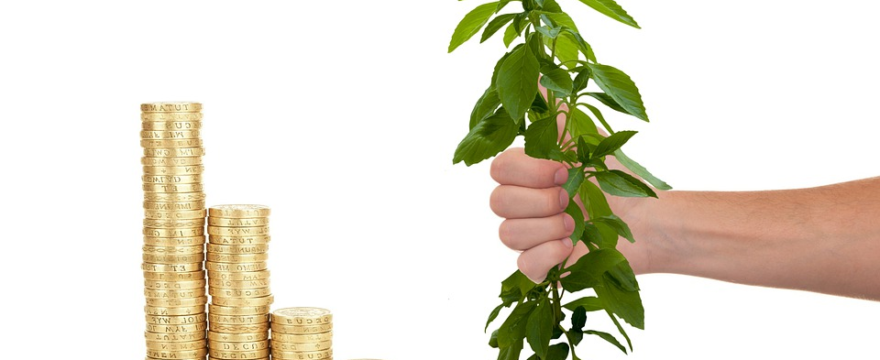 Effective Methods in Securing Loans for a New Business