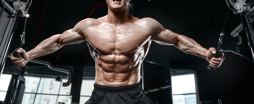 Body-Building Tips for the Beginner