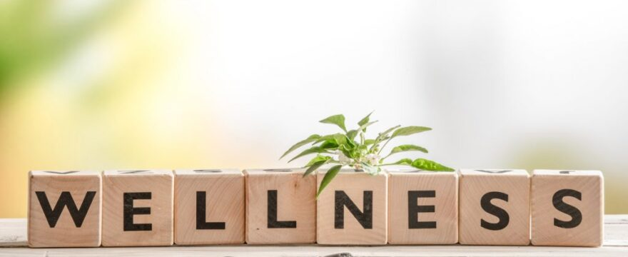 Tips for Opening a Holistic Wellness Center