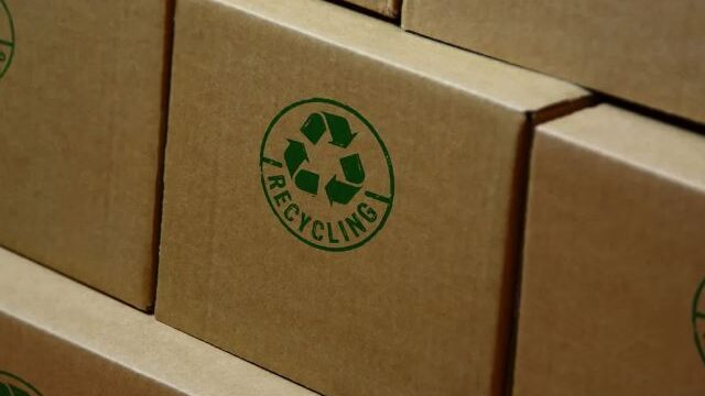 Top 5 Ways to Check If Your Packaging Is Really Eco-Friendly