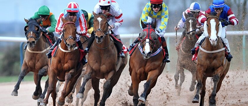 Types of Weather that Affect Horse Racing